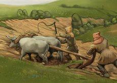 Ox Team Plowing